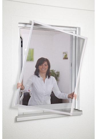 hecht international Insektenschutz-Fenster »BASIC«, weiß/anthrazit, BxH: 80x100 cm kaufen