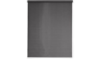 Seitenzugrollo »One size Style Lines«, sunlines, verdunkelnd, freihängend kaufen