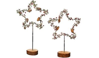 BONETTI LED Stern »Früchte und Zapfen«, 2 St., Warmweiß, 2er Set, mit Holzfuß, Höhe... kaufen