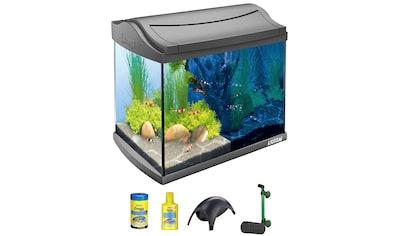 TETRA Aquarium »AquaArt LED Discovery Line«, 20 Liter, BxTxH: 39,5x28x33 cm, anthrazit kaufen