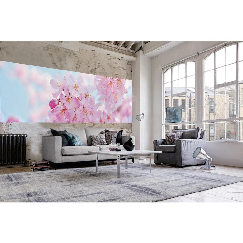 Papermoon Fototapete »Cherry Blossom Panorama«, matt, Vlies, 2 Bahnen, 350 x 100 cm