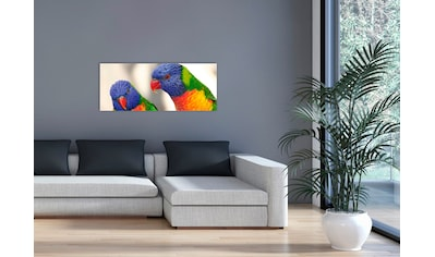 """Marmony Infrarotwandheizung »MOTIV-Heizkörper """"Birds"""", 800 Watt«, aus deutschem... kaufen"""