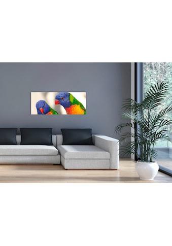 """Marmony Infrarotwandheizung »MOTIV-Heizkörper """"Birds"""", 800 Watt«, trocknet Wände und... kaufen"""