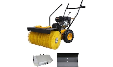TEXAS Kehrmaschine »Handy Sweep 650TGE« kaufen