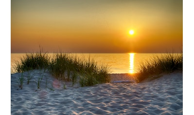 PAPERMOON Fototapete »Dunes Lake Michigan«, Vlies, in verschiedenen Größen kaufen
