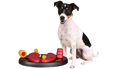 TRIXIE Tier-Intelligenzspielzeug »Push Away«, Kunststoff kaufen