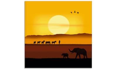 Artland Glasbild »Ein Morgen in der afrikanischen Savanne« kaufen