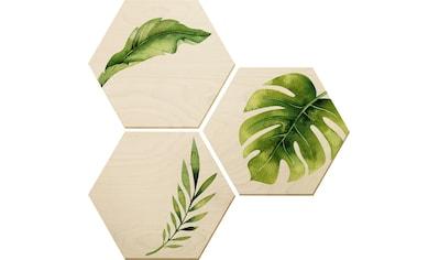Holzbild »Kvilis  - Dschungel 04« (Set) kaufen