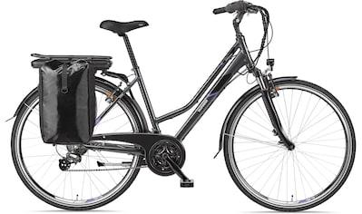 Telefunken E - Bike »Expedition XT480«, 21 Gang Shimano Altus Schaltwerk, Heckmotor 250 W kaufen