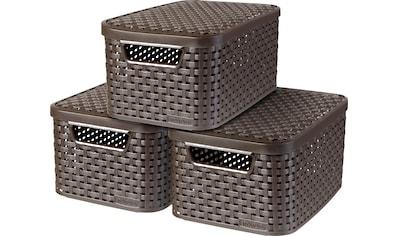 Curver Aufbewahrungsbox »Style Box S«, (Set, 3 St.), dunkelbraun kaufen