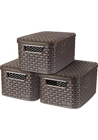 Curver Aufbewahrungsbox »Style Box S« (Set, 3 Stück) kaufen