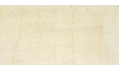 Slate Lite Dekorpaneele »Clear White Stripe«, aus Echtstein kaufen
