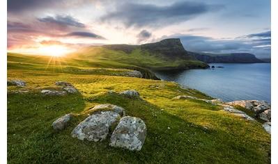 Komar Fototapete »Scottish Paradise«, mehrfarbig-natürlich-bedruckt kaufen