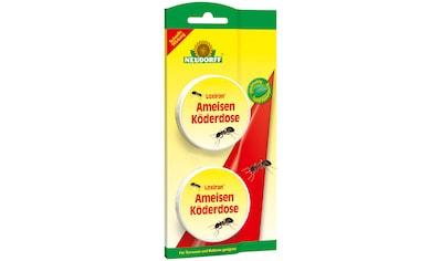 NEUDORFF Insektenvernichter »Loxiran Ameisen Köderdose«, 2 Stk. kaufen
