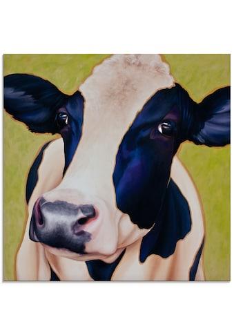 Artland Glasbild »Kuh Paula«, Haustiere, (1 St.) kaufen