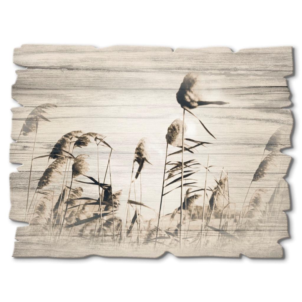 Artland Holzbild »Gräser«, Gräser, (1 St.)