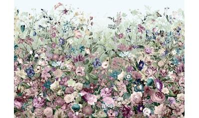 Komar Vliestapete »Botanica«, naturalistisch kaufen