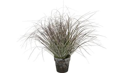 Kunstgras »Busch im Topf« (1 Stück) kaufen