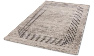Teppich, »Savona 202«, ASTRA, rechteckig, Höhe 20 mm, maschinell gewebt kaufen