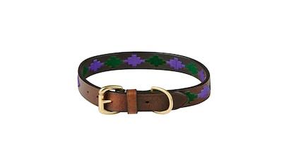 WeatherBeeta Hunde-Halsband »Polo Leder-Hundehalsband«, Textil, (1 St.) kaufen
