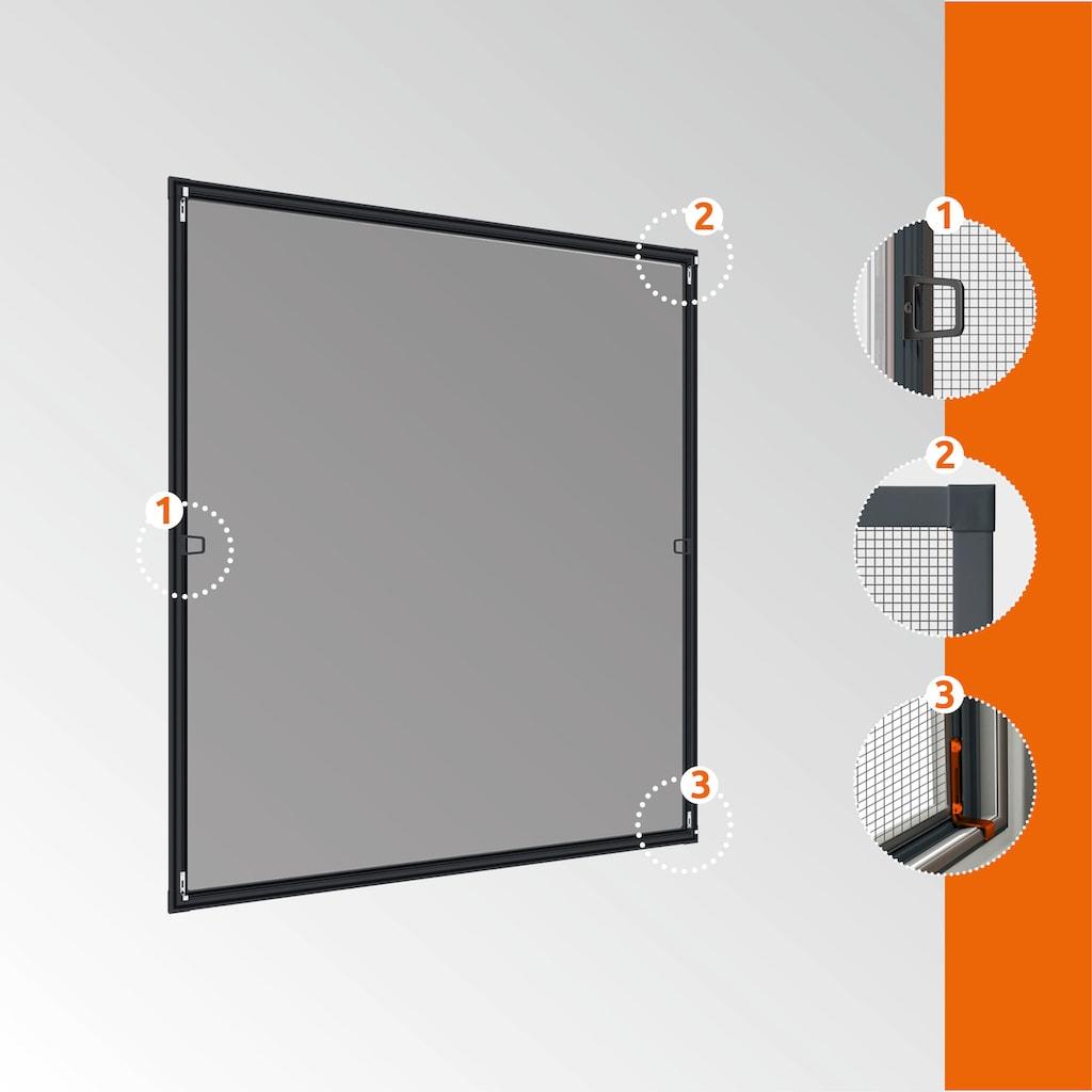 Windhager Insektenschutz-Fenster »PLUS«, BxH: 140x150 cm