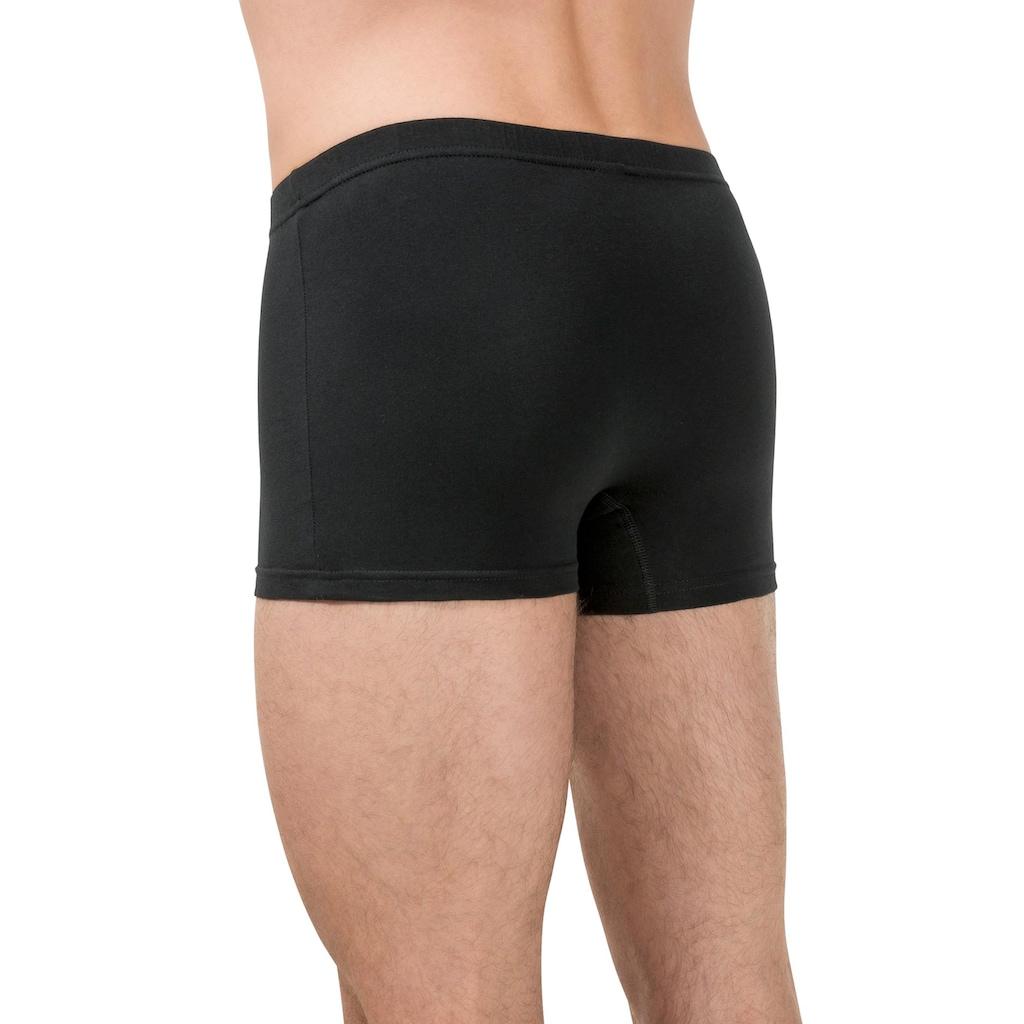 bugatti Panty