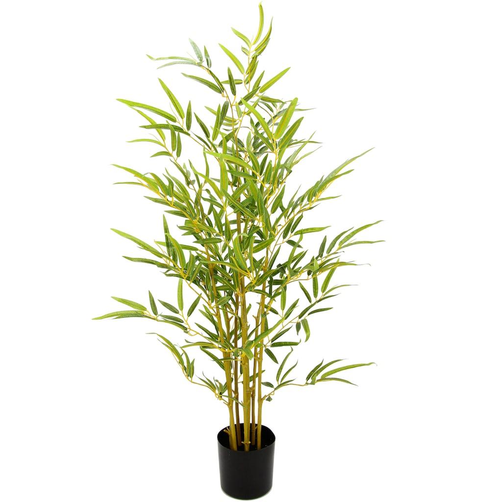 I.GE.A. Kunstbaum »Bambus«, Im Topf