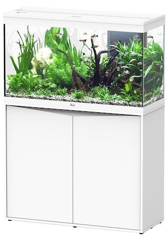 Aquatlantis Aquarien-Set »Splendid 200«, BxTxH: 102x40x144 cm, 249 l, mit Unterschrank in weiß kaufen