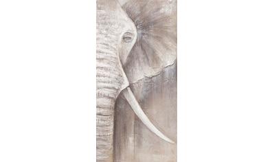 Spiegelprofi GmbH Ölbild »Grey Elephant right«, (1 St.) kaufen