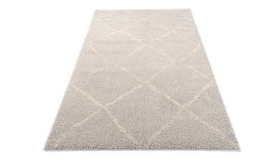 OCI DIE TEPPICHMARKE Hochflor-Teppich »Stockholm«, rechteckig, 30 mm Höhe, Wohnzimmer kaufen