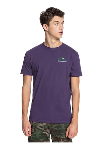 Quiksilver T-Shirt »Reflect« kaufen