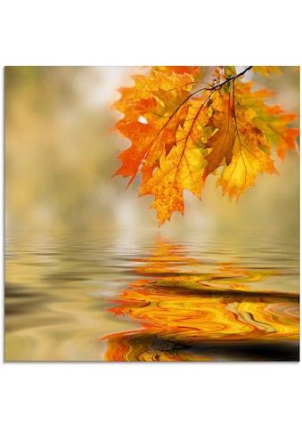 Artland Glasbild »Herbstblätter« kaufen