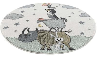 Carpet City Kinderteppich »Anime9394«, rund, 11 mm Höhe kaufen