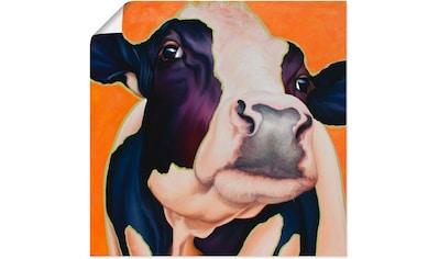 Artland Wandbild »Kuh Rosa« kaufen
