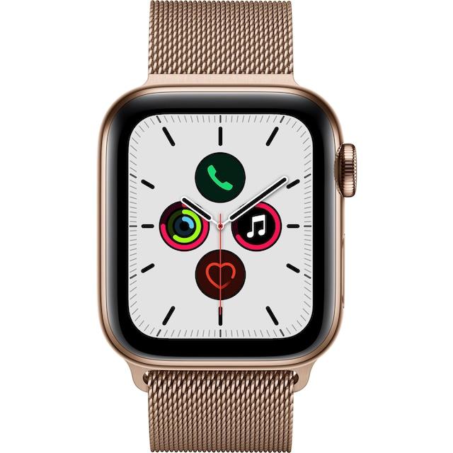 Apple Series 5 GPS + Cellular, Edelstahlgehäuse Milanaise Armband 40mm Watch (Watch OS 6)