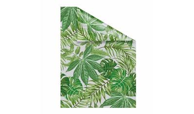 LICHTBLICK Fensterfolie »Blätter« kaufen