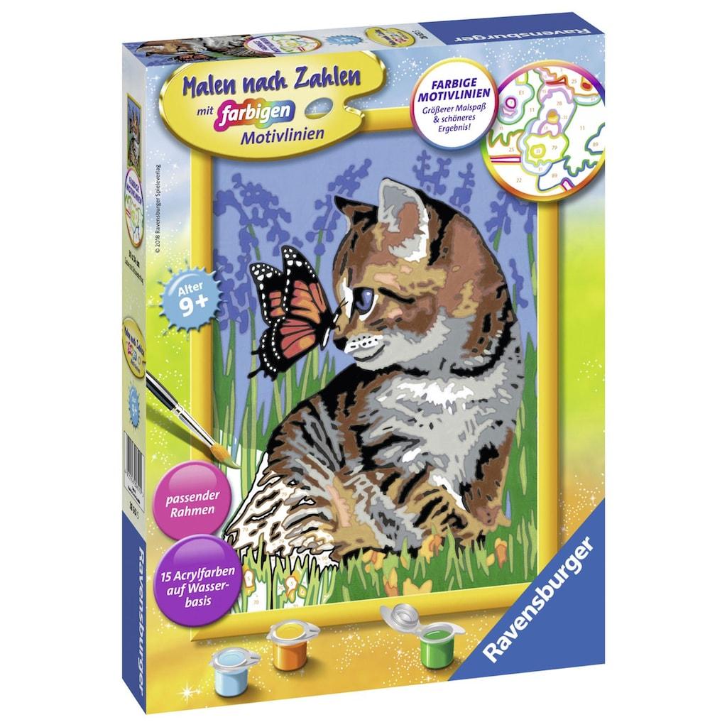 Ravensburger Malen nach Zahlen »Katze mit Schmetterling«, Made in Europe, FSC® - schützt Wald - weltweit