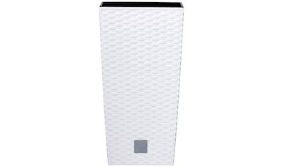 Prosperplast Pflanzkübel »Rato square«, BxTxH: 26,5x26,5x50 cm kaufen
