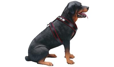 HEIM Hunde-Geschirr »Apollo«, Leder kaufen
