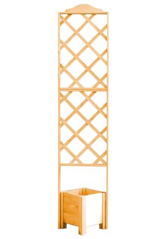 promadino Spalier, mit Pflanzkasten, BxTxH: 47x45x210 cm kaufen