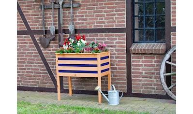 promadino Pflanzkübel, auf Beinen, BxTxH: 88x48x90 cm kaufen