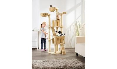 ABUKI Kratzbaum »Coco«, BxTxH: 50x50x170 cm, beige kaufen