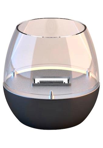 TENDERFLAME Tischfeuer »Tulpe«, mit Glasring kaufen