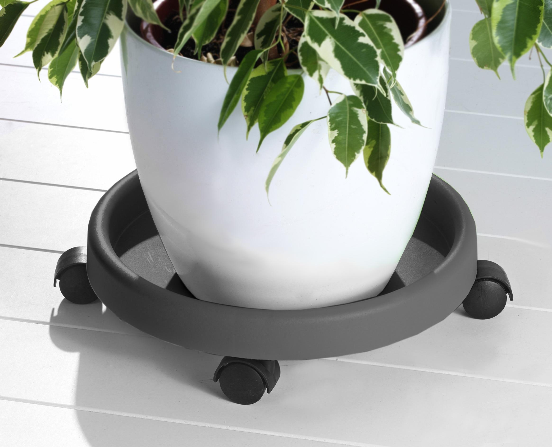 Ruco Blumentopfuntersetzer, (Set, 2 tlg.), Kunststoff, Ø 34 cm grau Blumentopfuntersetzer Zubehör Pflanzen Garten Balkon