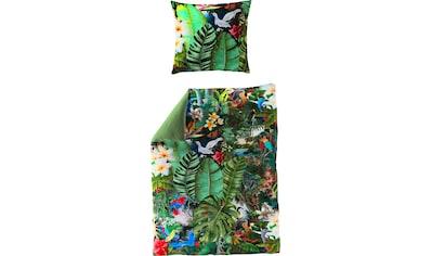 BIERBAUM Wendebettwäsche »Tropical«, mit Blättern kaufen