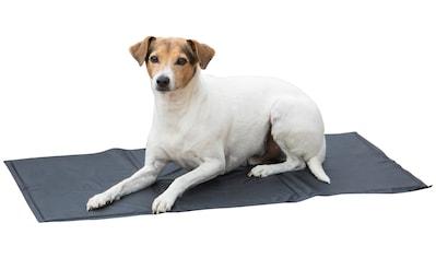 ABUKI Hunde - Kühlmatte für Hunde, 50x90 cm kaufen