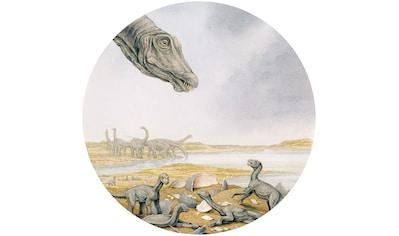 Komar Fototapete »Young Titanosaurs«, bedruckt-Comic-Retro-mehrfarbig, BxH: 128x128... kaufen