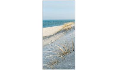 MySpotti Spritzschutz »fresh Sea Coast«, 100 x 210 cm kaufen