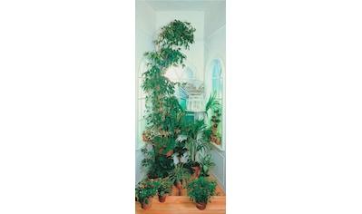Papermoon Fototapete »Window - Türtapete«, matt, Vlies, 2 Bahnen, 90 x 200 cm kaufen