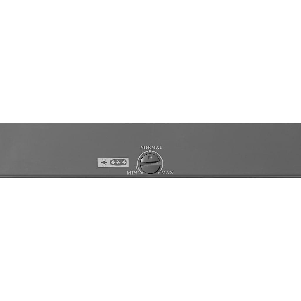 Hanseatic Gefrierschrank »HGS 17060A2«